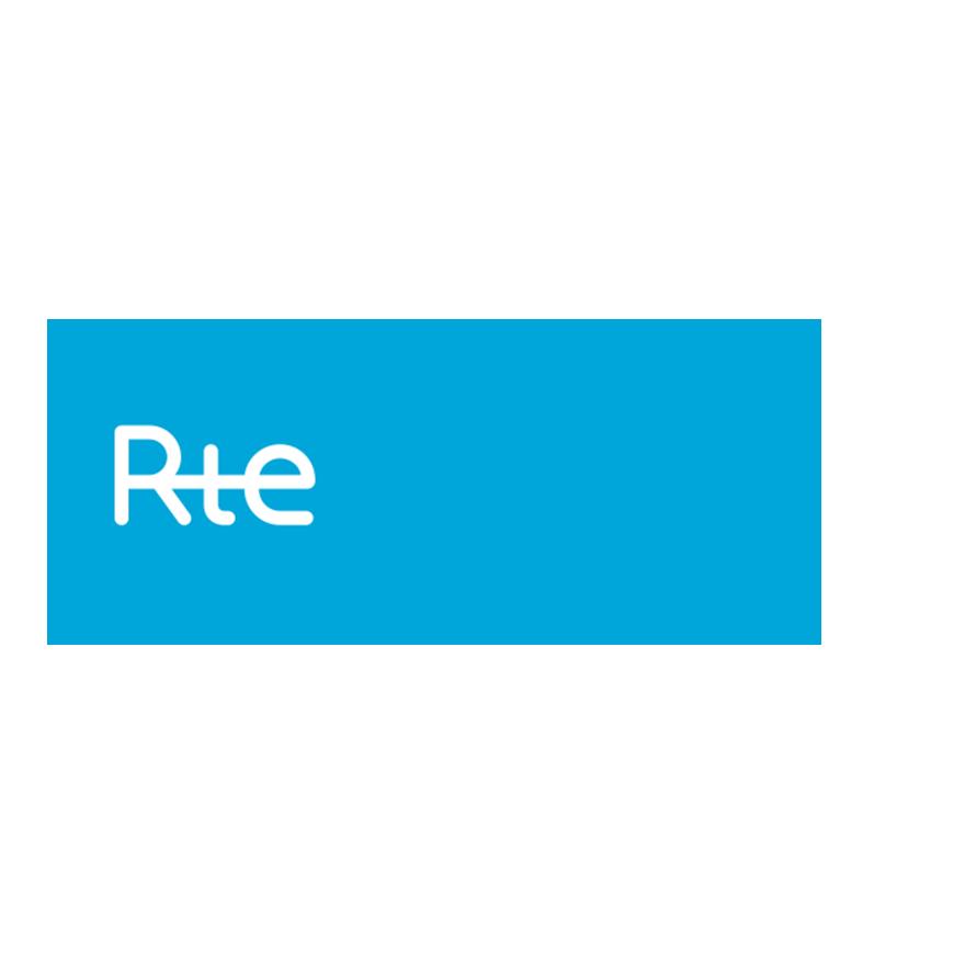 Rapport Réseau De Transport D'Electricité (RTE) Et Mix énergétique : Principaux Enseignements Et Objectifs Prioritaires Du Gouvernement