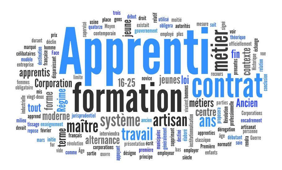 Apprentissage : « Aujourd'hui, Les Entreprises Et Les Jeunes Tournent Autour D'un Système Complexe. Il Faut Qu'il Soit Simple Et Qu'il Tourne Autour D'eux ! »