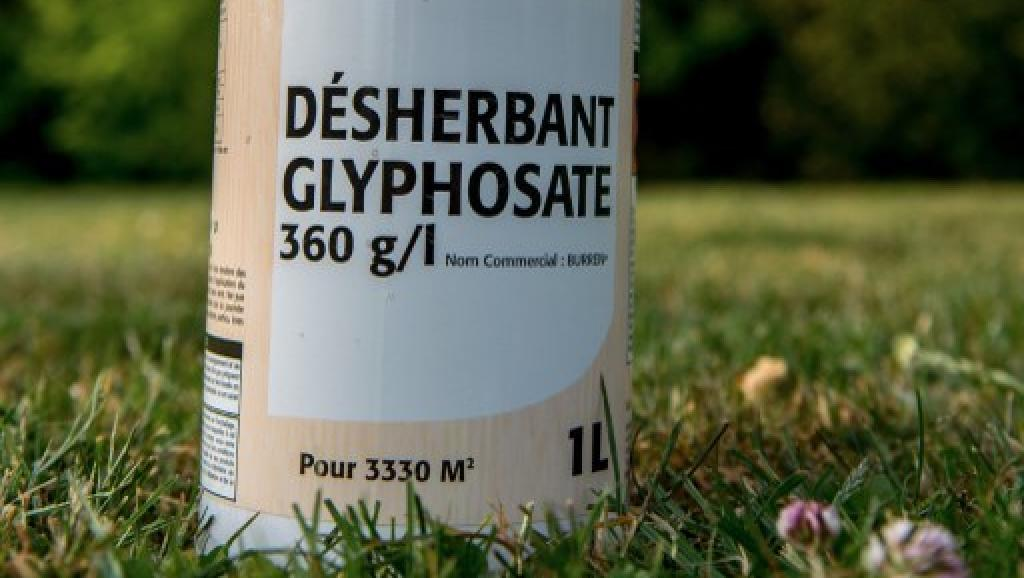 L'interdiction Du Glyphosate