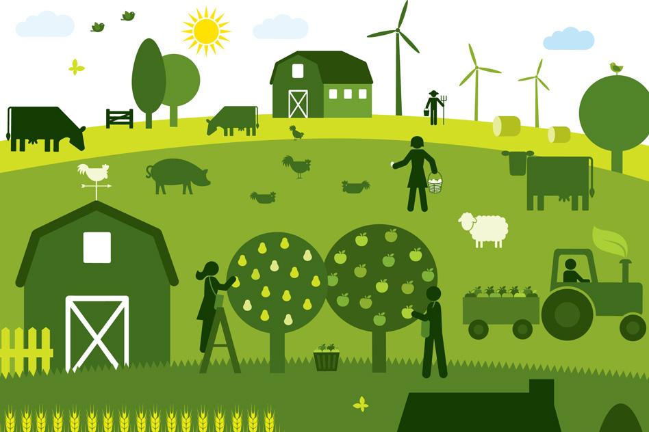 Bilan Des Un An: Agriculture Et Alimentation